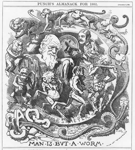Caricature of Charles Darwin 'Man Is But A Worm.' by a Punch Magazine Artist, c. 1881-1882.