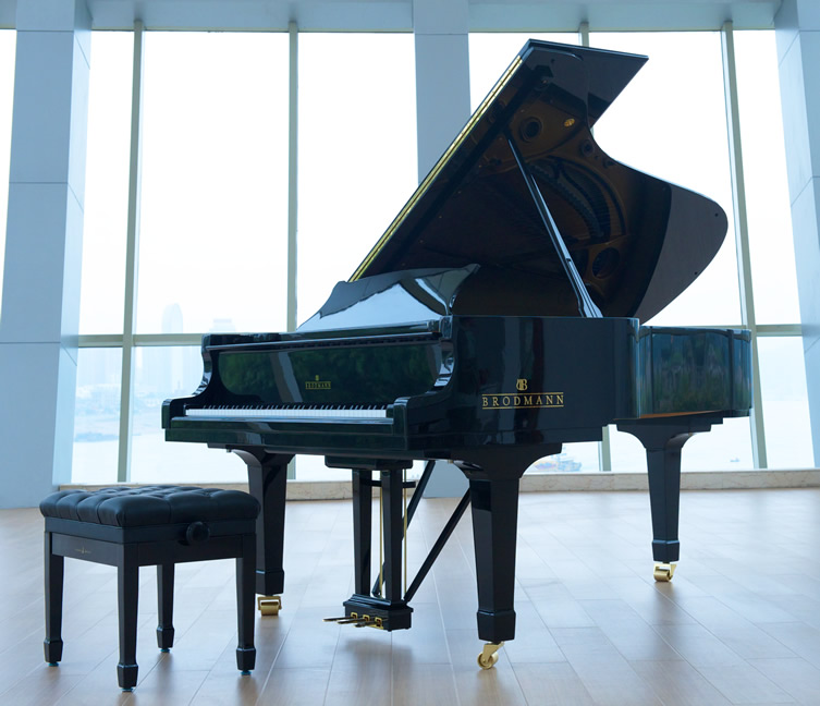 Brodmann grand piano with artist bench.