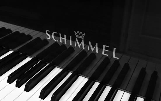 Detail of a Schimmel piano.